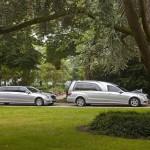 Zilvergrijs staatsie Mercedes